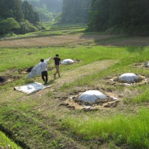 農作業の差し入れで、一番有難いのは。