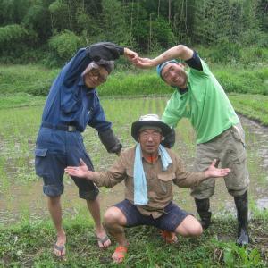 餅米の田植えが終わりました(閲覧注意)マムシの治療画像あり