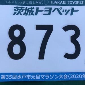 千波湖元旦マラソン(3K)の目標。
