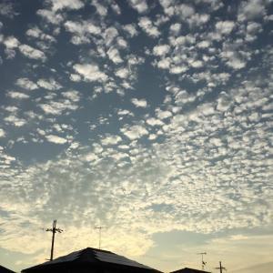今朝の空と録画三昧