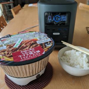 そろそろ鍋焼きうどんの季節(電気編)