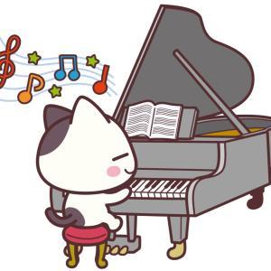 ネコがいる音楽教室です