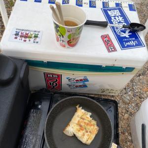 久しぶりに知多半島サビキ、マイワシ爆!!