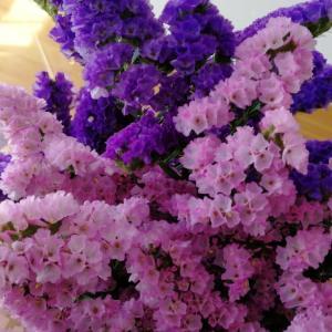 こんな時だから。花で部屋を心地よく&長男美容室に。