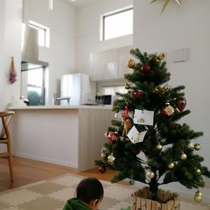 クリスマスツリー出しました☆&言い間違い