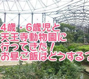 4歳・6歳児と天王寺動物園に行ってきた!お昼ご飯はどうする?