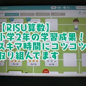 【RISU】小学2年の学習成果!スキマ時間にコツコツ取り組んでます