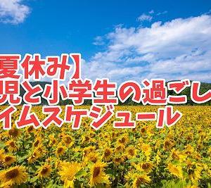 【暑すぎ夏休み】幼児と小学生の過ごし方・タイムスケジュール