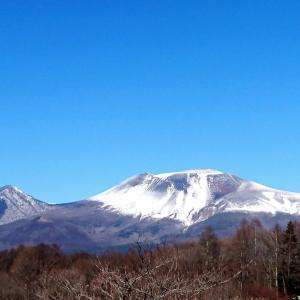 【軽井沢便り】春の日差しを感じる今日この頃です。レストランHana半額フェアのお礼!