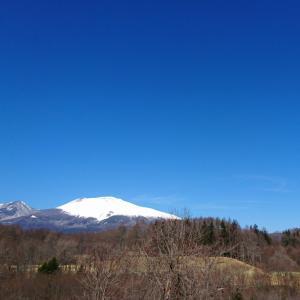 【軽井沢便り】3/9、今日の軽井沢は穏やかで春が感じられる陽気です。