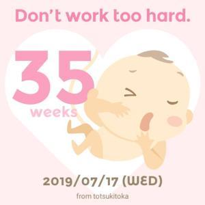 【妊娠35週】妊婦健診と帰省
