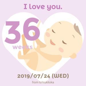 【妊娠36週】いよいよ臨月に突入!