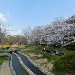 木曽三川公園 チューリップまつり その2
