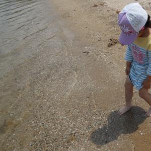 セキスイハイムの住み心地☆快適エアリーなしでは生きていけない☆今年初の海に行ってきました☆