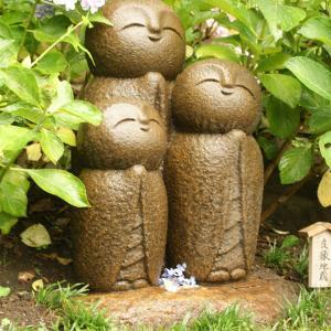1年前の鎌倉の長谷寺の思い出。ちょうど雨でした。