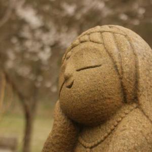 桜が満開の川崎町の工房です。看板猫モモコも元気です。