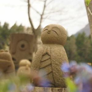 ソメイヨシノの花びらが散り、山笑う侯へ進んでいきます。ワスレナグサを植えました。
