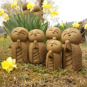 水仙の花が風に倒れて。スミレが可憐に。よもぎ蒸しパンには桜の塩漬け載せて。