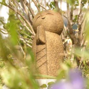青い花いろいろ、ツルニチニチソウ、ミヤコワスレ、フデリンドウ。石んこ地蔵といっしょに。