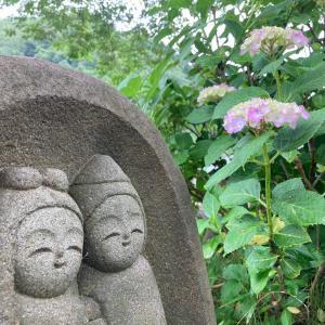 野外ギャラリーの紫陽花と石んこ地蔵。