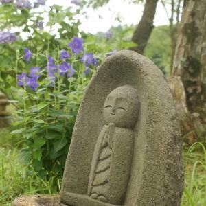 夏の花のまっさかり。葛の花、むくげの花、萩、ぎぼうし、ききょう。ラタトィユ、誰かの誕生日。