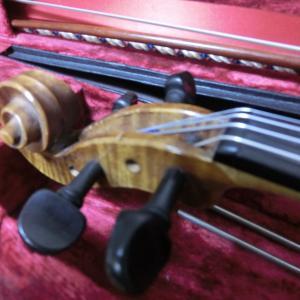 バイオリンないない
