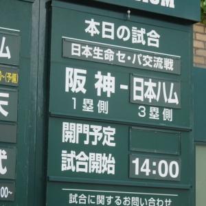 2019タイガース⑧vs日本ハム