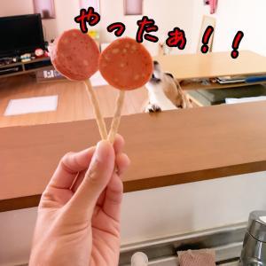 食欲の秋!!到来!!