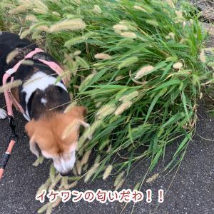 いきなり!!寒!!