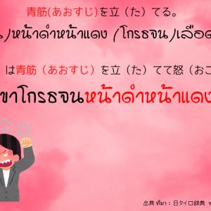 タイ日翻訳 青筋を立てる。   (โกรธจน)หน้าดำหน้าแดง    (โกรธจน)เลือดขึ้นหน้า