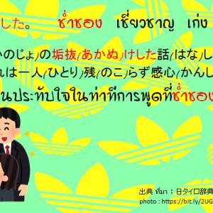 タイ日翻訳 ช่ำชอง 垢抜けた。