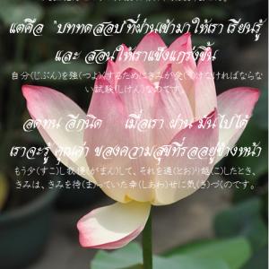 タイ日翻訳 อดทน อีกนิด もう少し我慢