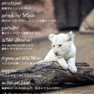 タイ日翻訳 อยากก้าวหน้า前進したければ。