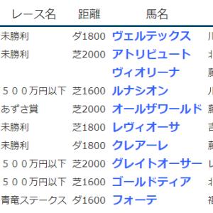 result_2020.5.16-17◆ルナシオン・グレイトオーサー・ゴールドティア(500万下勝ち)、アトリビュート(未勝利勝ち)など