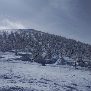 今年は樹氷がほとんどなかった山形蔵王 その1