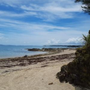 シーグラスビーチ