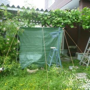 庭キャンでカーサイドタープ