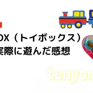 定額制のレンタルおもちゃ[TOY BOX]2歳娘用に申し込んでみた感想