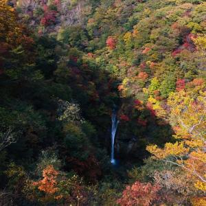昼下がりの駒止の滝
