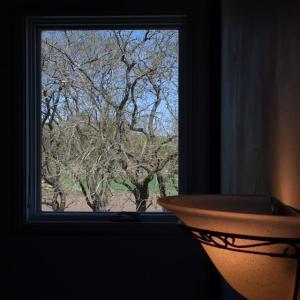 窓の景色 * 桑の葉劇場