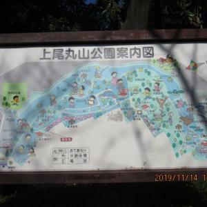 上尾丸山公園へ行きました・・・・・公園の大きいのに驚きました!!!!!
