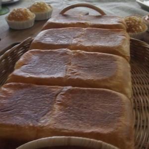 食パンコース始まりました。