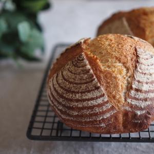 天然酵母のパン作り