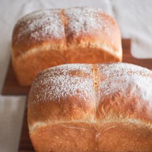 定番食パン