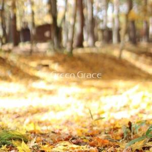 【お知らせ】秋のお泊りキャンプ