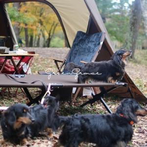 秋のお泊りキャンプ