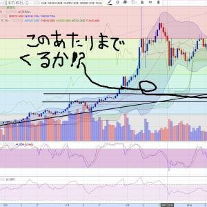 1月16日からの仮想通貨の大暴落 ~どこまで下がるか!?を考えるワタシ~