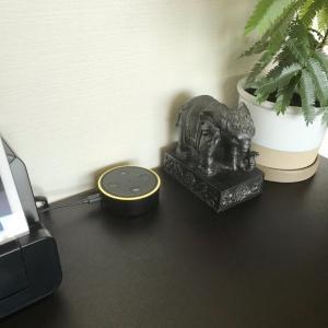 【Amazonプライム】日用品の管理と東京ラブストーリー