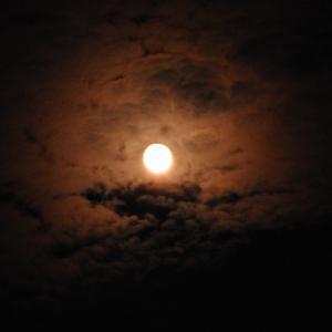 満月を久しぶりに見た