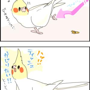 【汚い話】ユニのフンが飛ぶ